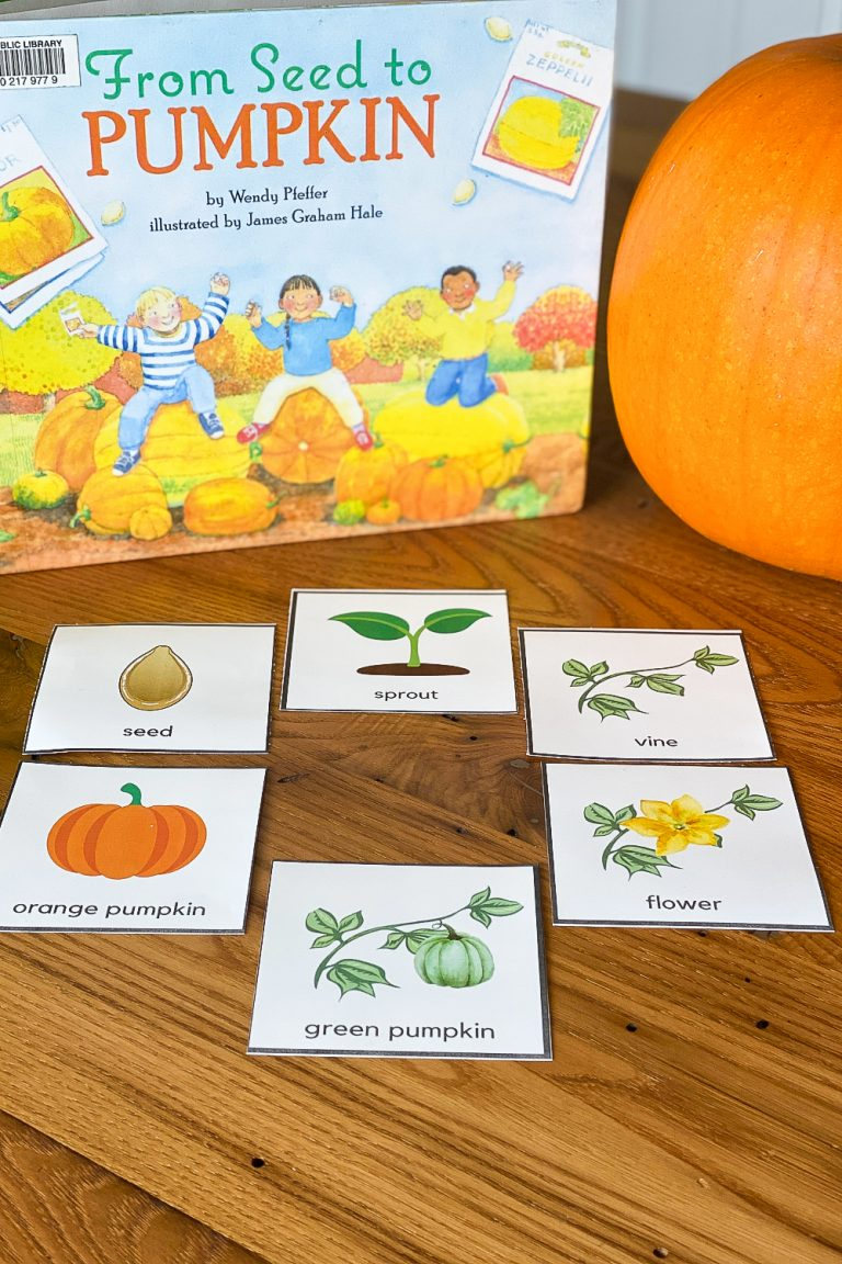 Fun & Simple Pumpkin Science Lessons for Kids